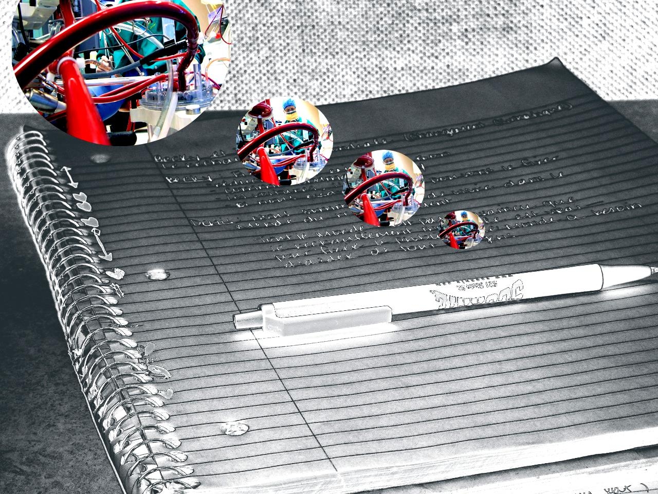F311-3Mynotebook