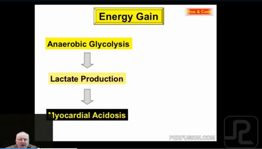 5 Lactate prododuction