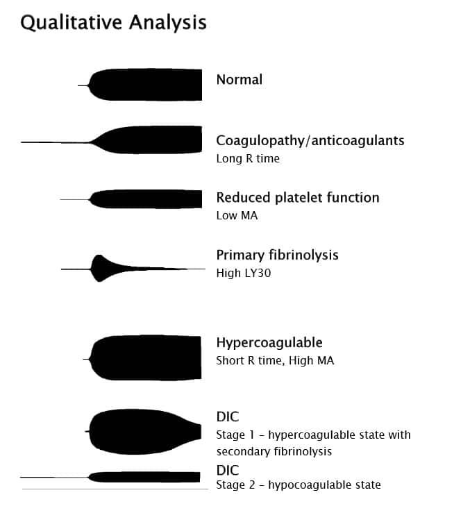 Graphic Analysis