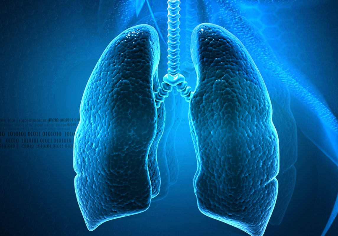 lungs1012